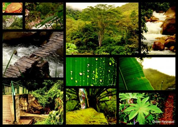 5 - Entre Quillabamba et les coopératives.jpg