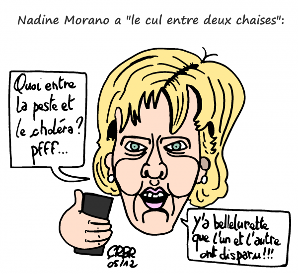 nadine morano,ump,fn,le pen,tweet raciste,sarko,10 juin morano,twitter,violence,guerre,paix,einstein,honte