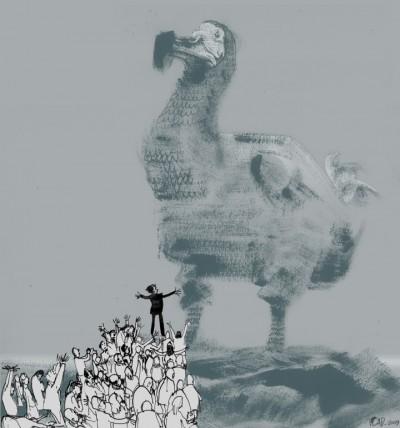 dodo1.jpg